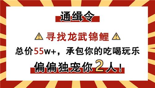 "bob首页:《龙武》新版开启预约 55万悬赏""最强锦鲤"""